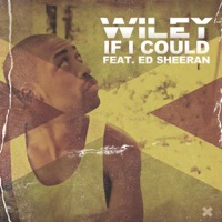 If I Could (feat. Ed Sheeran) - Single - Wiley