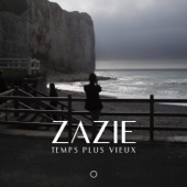 Temps Plus Vieux (Remix) - Single
