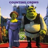 Counting Crows - Accidentally In Love kunstwerk