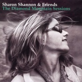 The Galway Girl - Sharon Shannon & Friends