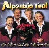 Rot Sind Die Rosen