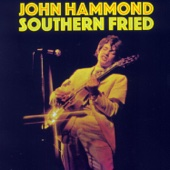 John Hammond, Jr. - Southern Fried  artwork