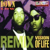 Vision of Life Remix - EP cover art
