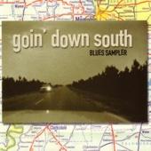 Goin' Down South Blues Sampler