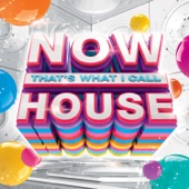 Various Artists - NOW That's What I Call House  artwork