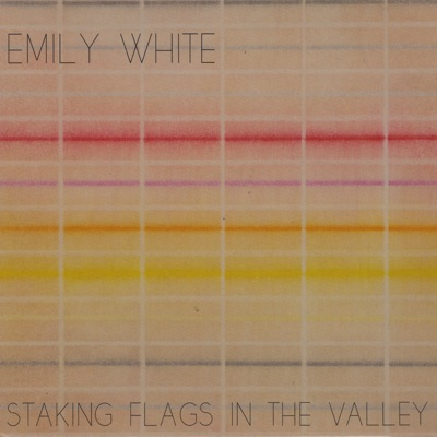 Staking Flags In The Valley