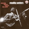 More Real Folk Blues, Muddy Waters
