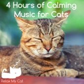 4 Hours of Calming Music for Cats