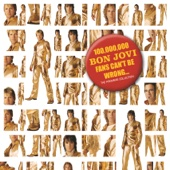 100,000,000 Bon Jovi Fans Can't Be Wrong cover art