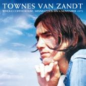 Townes Van Zandt - The Ballad of Ira Hayes (Remastered) [Live] artwork