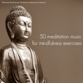 50 Meditation Music for Mindfulness Exercises - Meditation Songs & Relaxing Music for Yoga Meditation and Guided Imagery