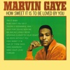 How Sweet It Is To Be Loved By You, Marvin Gaye