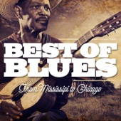Best of Blues - From Mississipi to Chicago
