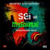 Sei Sei Marasta Zimdancehall Flava - Various Artists