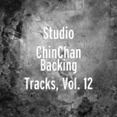 Backing Tracks, Vol. 12