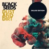 Dust and Dirt (Deluxe Edition), The Black Seeds