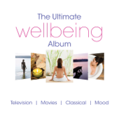 The Ultimate Wellbeing Album
