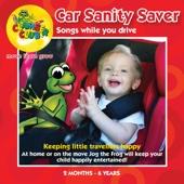 Car Sanity Saver