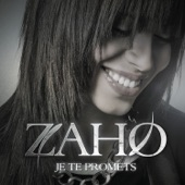 Je te promets (Down Lo Remix) - Single