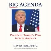 Big Agenda: President Trump's Plan to Save America (Unabridged) - David Horowitz Cover Art