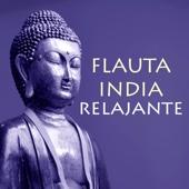 Flauta India Relajante - Canciones de Flauta Nativa con Sonidos de Fundo de la Naturaleza