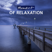 Relieve Stress (Healing Sea Sound)