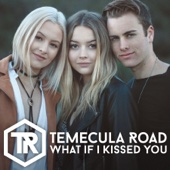 What If I Kissed You - Temecula Road Cover Art