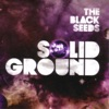 Solid Ground, The Black Seeds