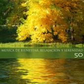 Música de Bienestar, Relajacion y Serenidad 50 - Música de Fundo para Descansar y Liberar la Mente