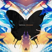 Strangers - Tritonal Cover Art