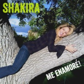 Shakira - Me Enamoré illustration