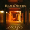 Into the Dojo, The Black Seeds