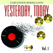 Carlinhos Borba Gato - Wild World artwork