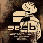 What Do You Love (Remixes) [feat. Jacob Banks]