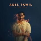 Adel Tawil - So schön anders (Deluxe Version) Grafik