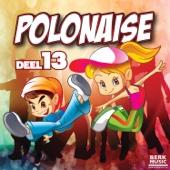 Various Artists - Polonaise, Vol. 13 (2017) kunstwerk