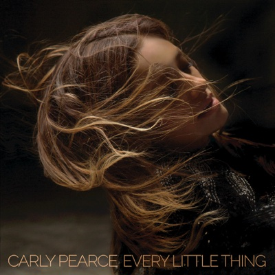 Every Little Thing - Carly Pearce song