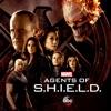 Výsledek obrázku pro agents of shield