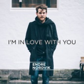 I'm in Love with You - Endre Nordvik Cover Art