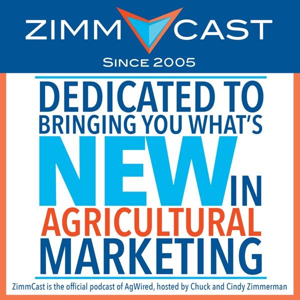 ZimmCast