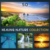 50 Healing Nature Collection: Soothing Sound of Nature for Relaxation, Meditation, Concentration, Deep Sleep & Wellbeing