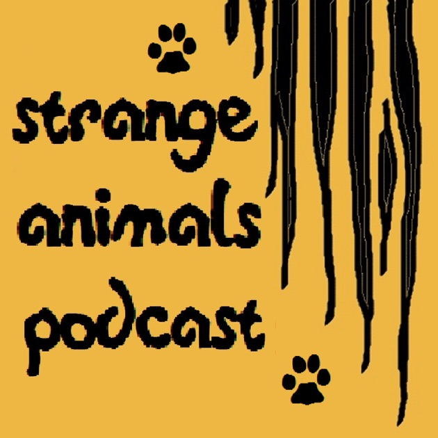Image result for strange animals podcast album art