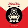 Pollinator, Blondie