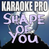 Shape of You (Originally Performed by Ed Sheeran) [Instrumental Version]