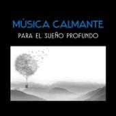 Música Calmante para el Sueño Profundo - Tratamiento Natural, Cura el Insomnio, Sueño Lúcido, Meditación Antes de Acostarse