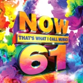 Now That's What I Call Music, Vol. 61 - Various Artists