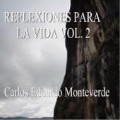 Reflexiones para la Vida, Vol. 2