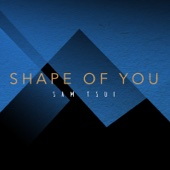 Shape of You - Sam Tsui