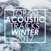 Top 20 Acoustic Tracks Winter 2017 (Instrumental Version)