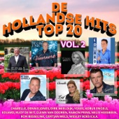 De Hollandse Hits Top 20 vol. 2